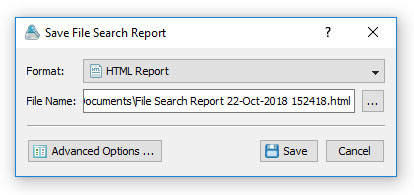 VX Search Save File Search Report